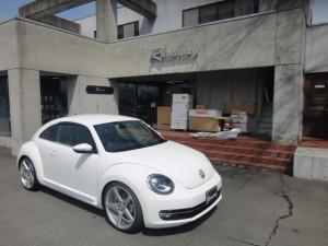 4,24 beetle (2)