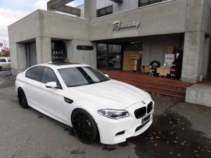 11,10 BMW F10 M5 AGIO RCK (5)