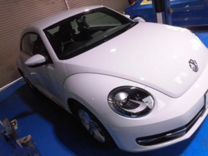 1.23 the beetle xpel (1)
