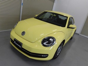 7,9 THE BEETLE COTING (3)